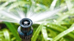 Wasseraufbereitung clever nutzen