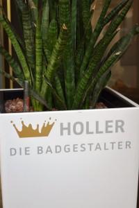 holler-krefeld-ausstellung-pflanze